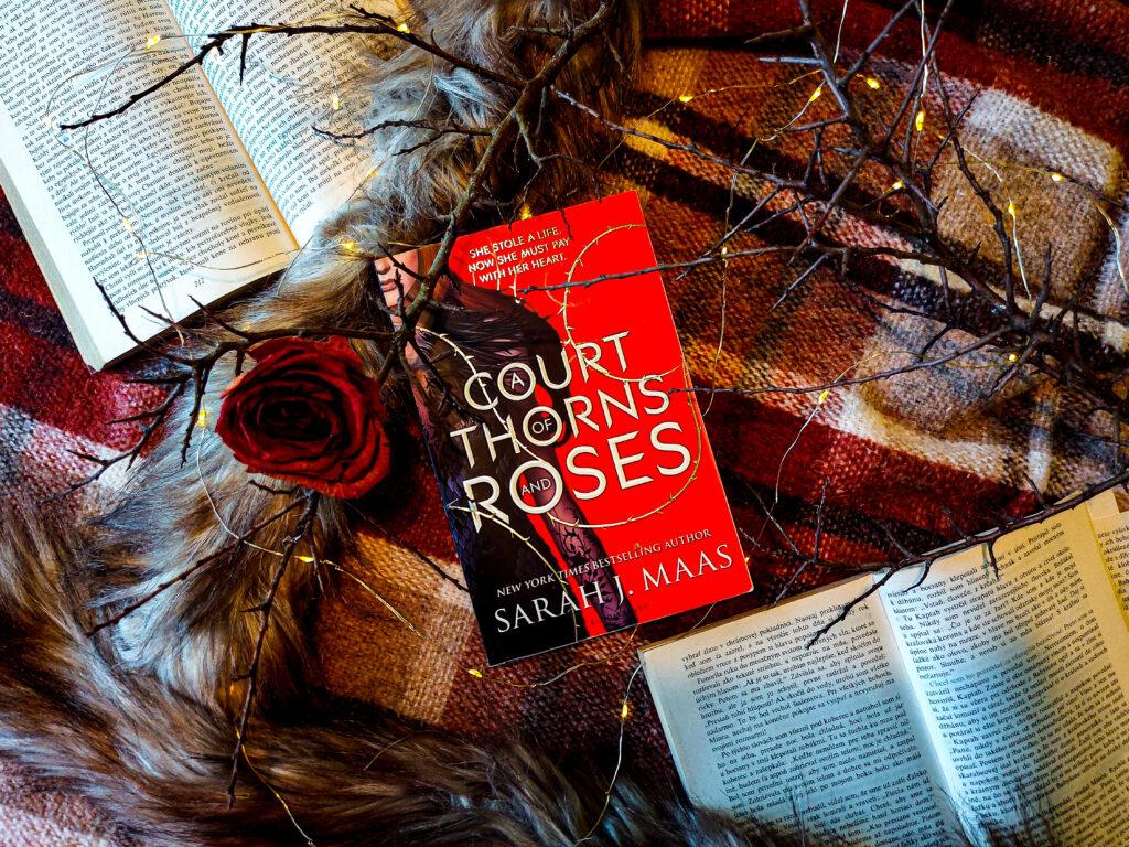 RECENZIA: Na dvore z tŕňov a ruží - Sarah J Maas